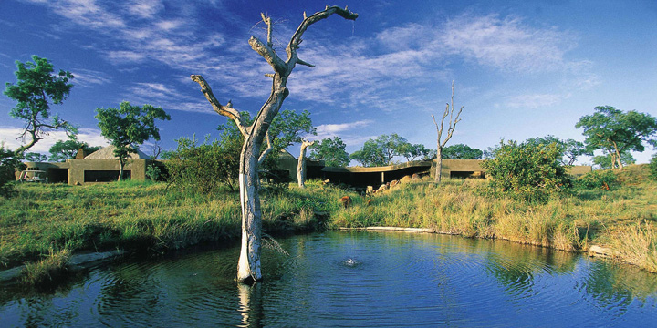 Upgrade to Sabi Sabi Earth Lodge